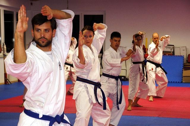 Kampfsport Online Karatesport